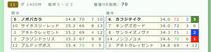 Photo_38